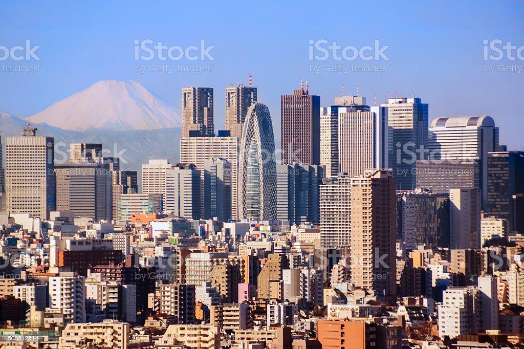 Tokyo skyline with Mt Fuji stock photo