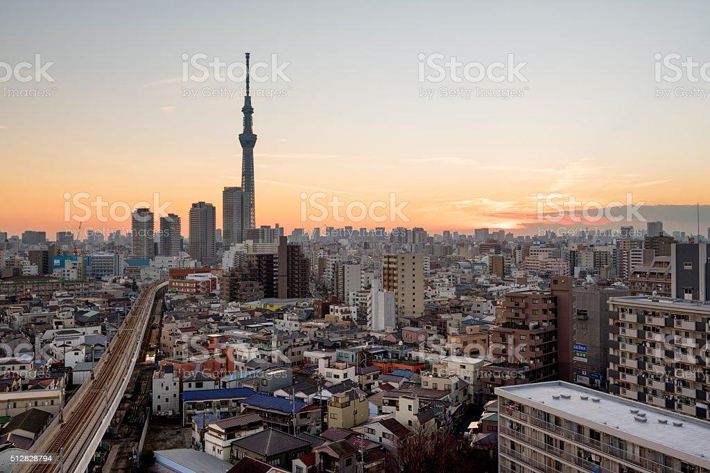 Tokyo Skyline with SkyTree stock photo