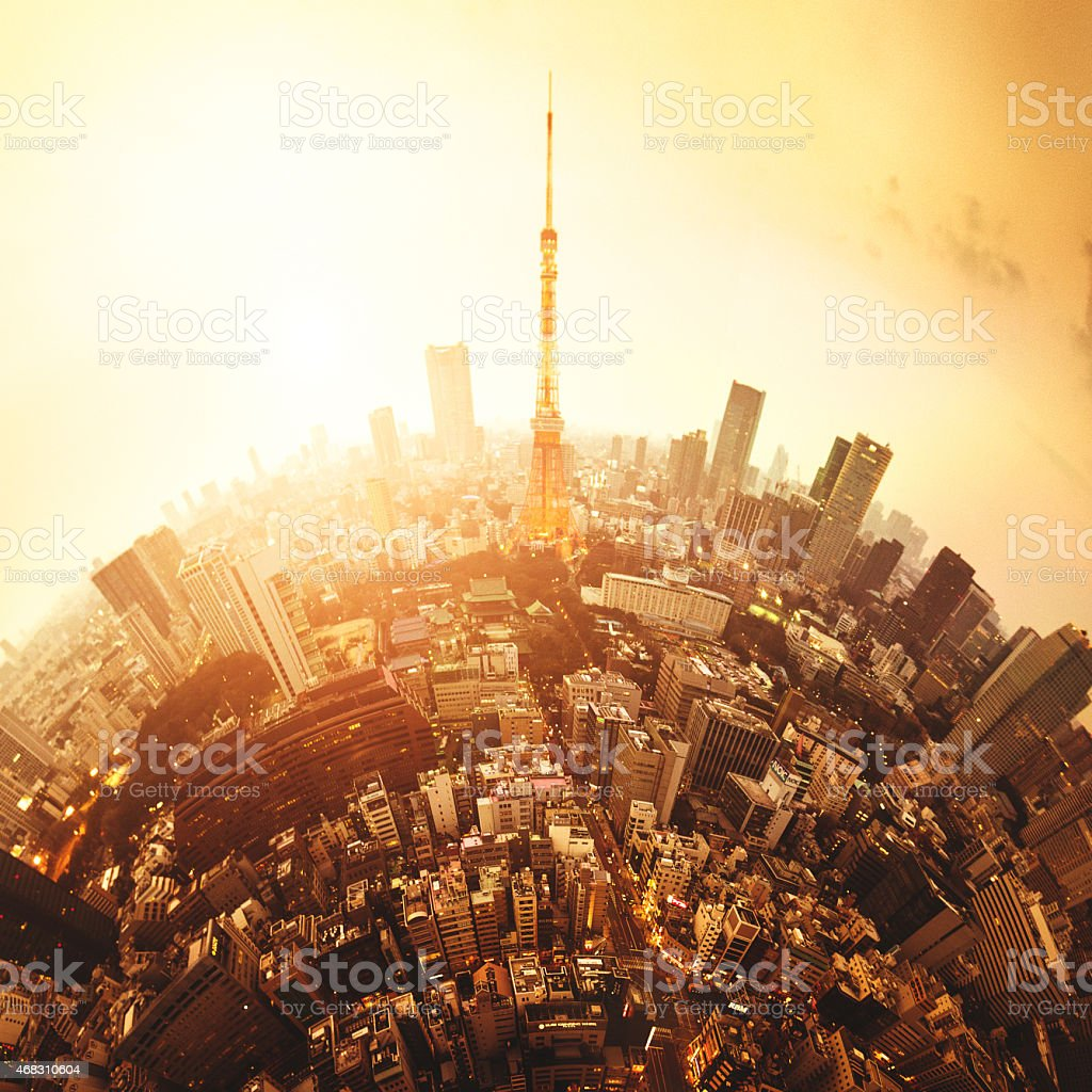 Tokyo skyline with the Tokyo Tower stock photo