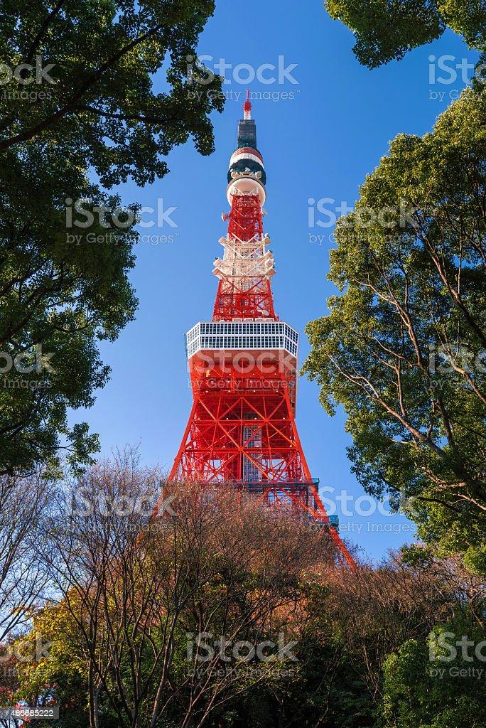 Tokyo Tower and Shiba Park in Tokyo, Japan stock photo