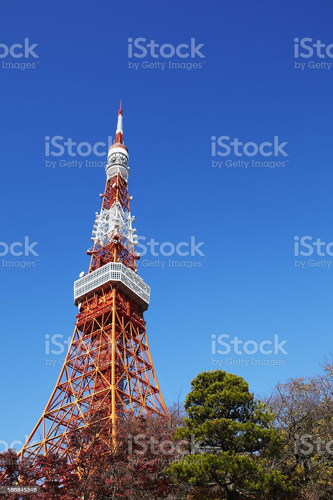 Tokyo tower in autumn royalty-free stock photo