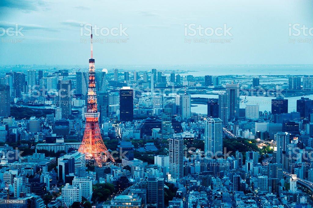 Tokyo Tower Skyline at Dusk stock photo