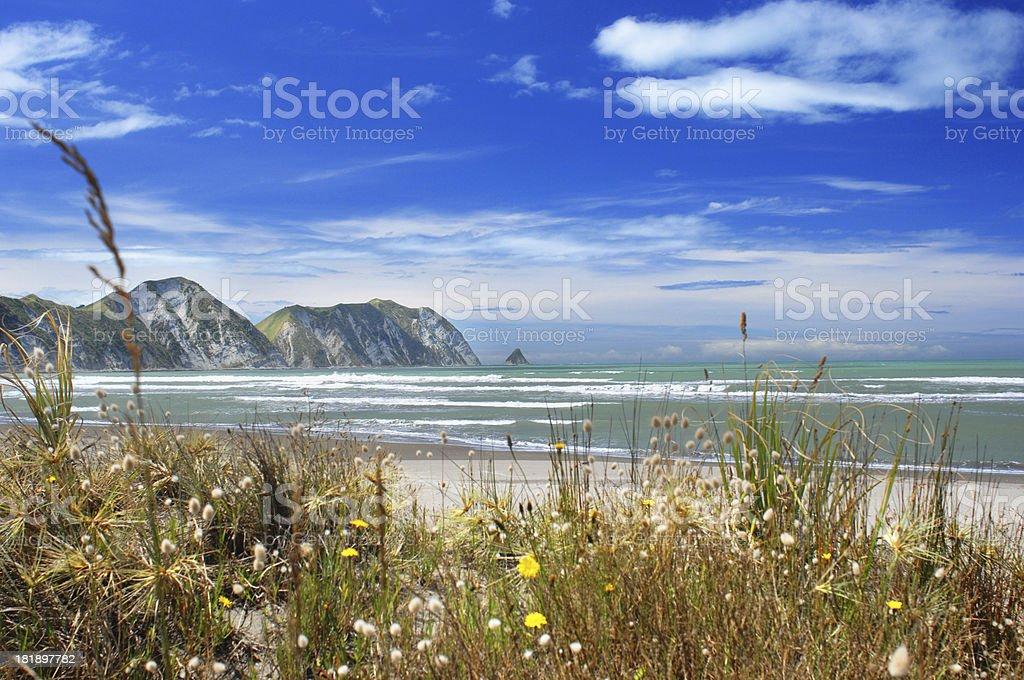 Tolaga Bay stock photo