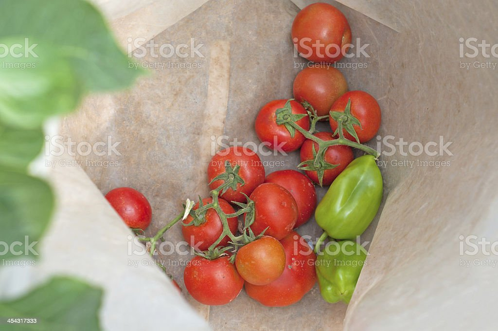 Tomato and bell pepper royalty-free stock photo