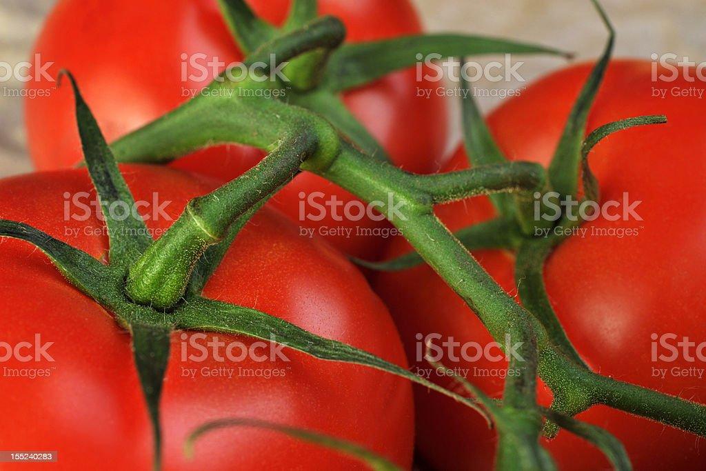 tomato bunch royalty-free stock photo
