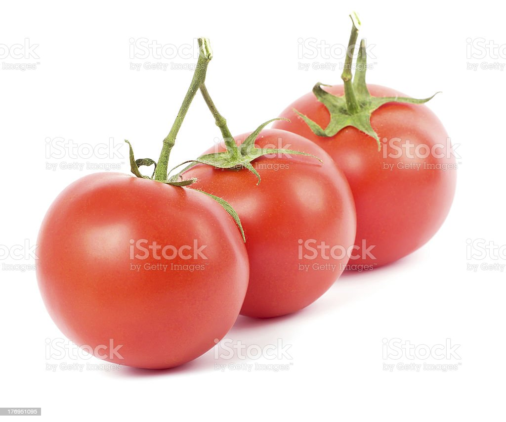 Tomato fruits royalty-free stock photo