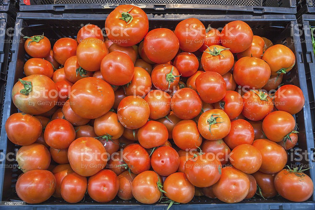 tomato in market royalty-free stock photo