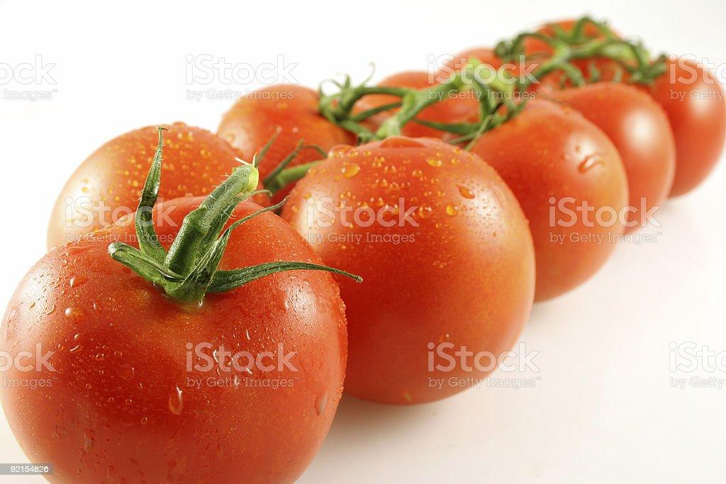 Tomato Perspective stock photo