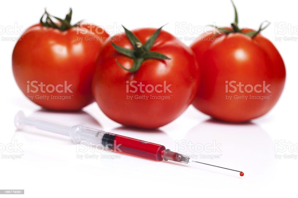 GMO tomato royalty-free stock photo