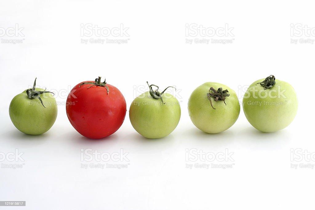Tomato series - same but different stock photo