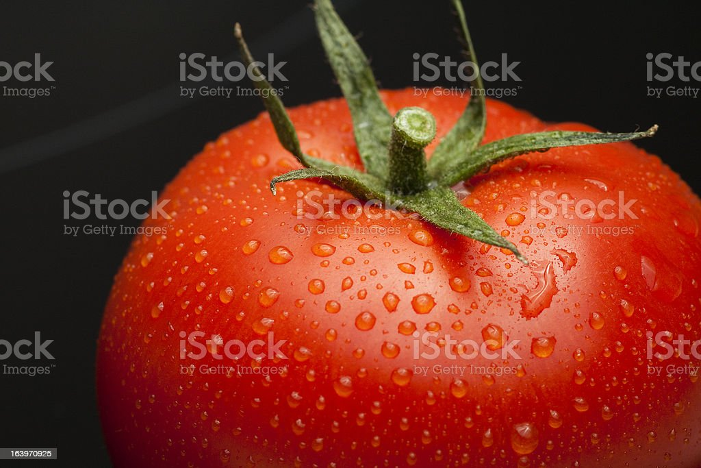 Tomato single with drops isolated on black royalty-free stock photo