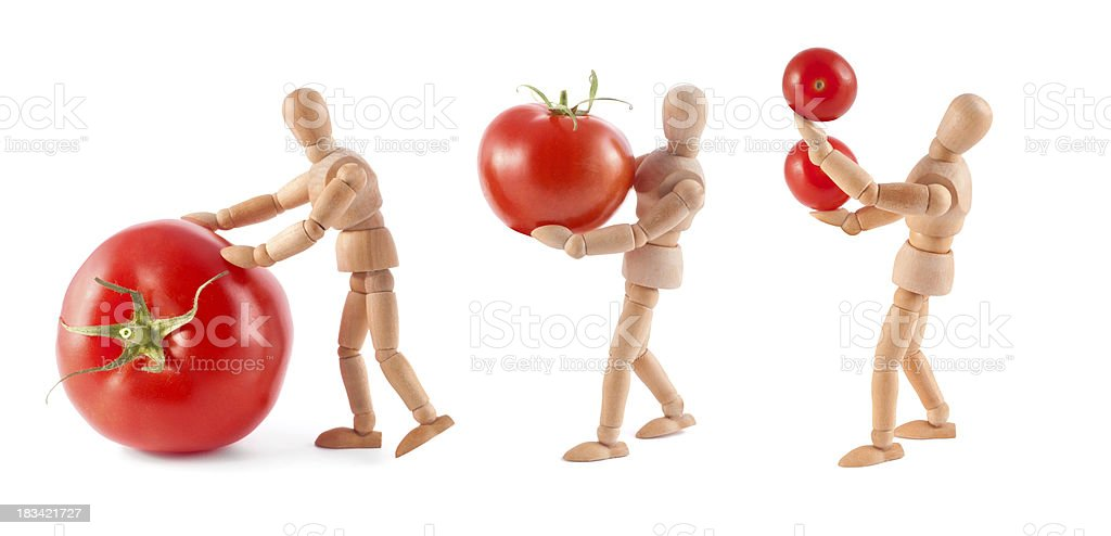 Tomato transport - wooden mannequins at work stock photo