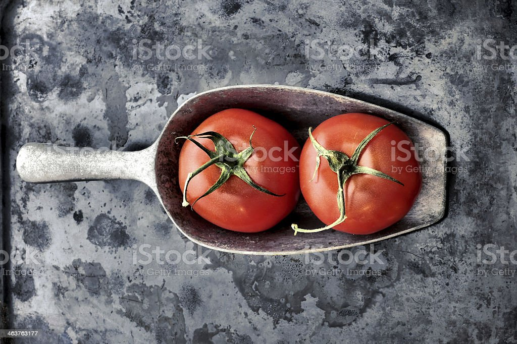 tomato vintage style dark background royalty-free stock photo