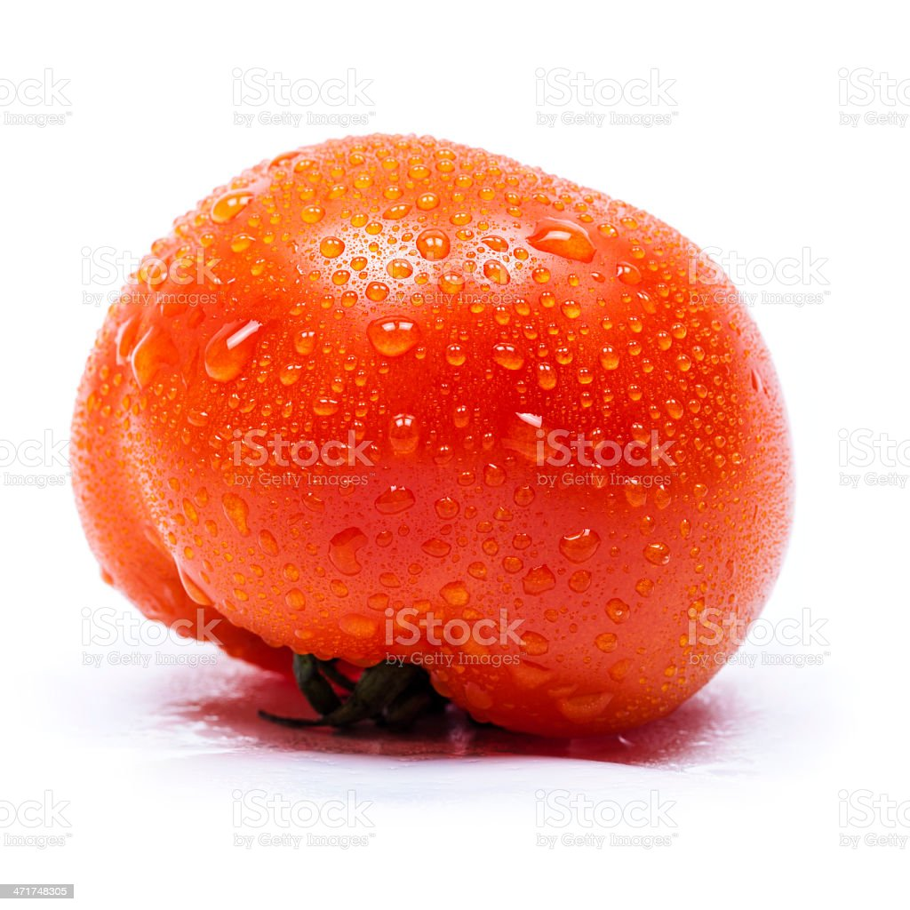 Tomato with dew, isolated on white background royalty-free stock photo
