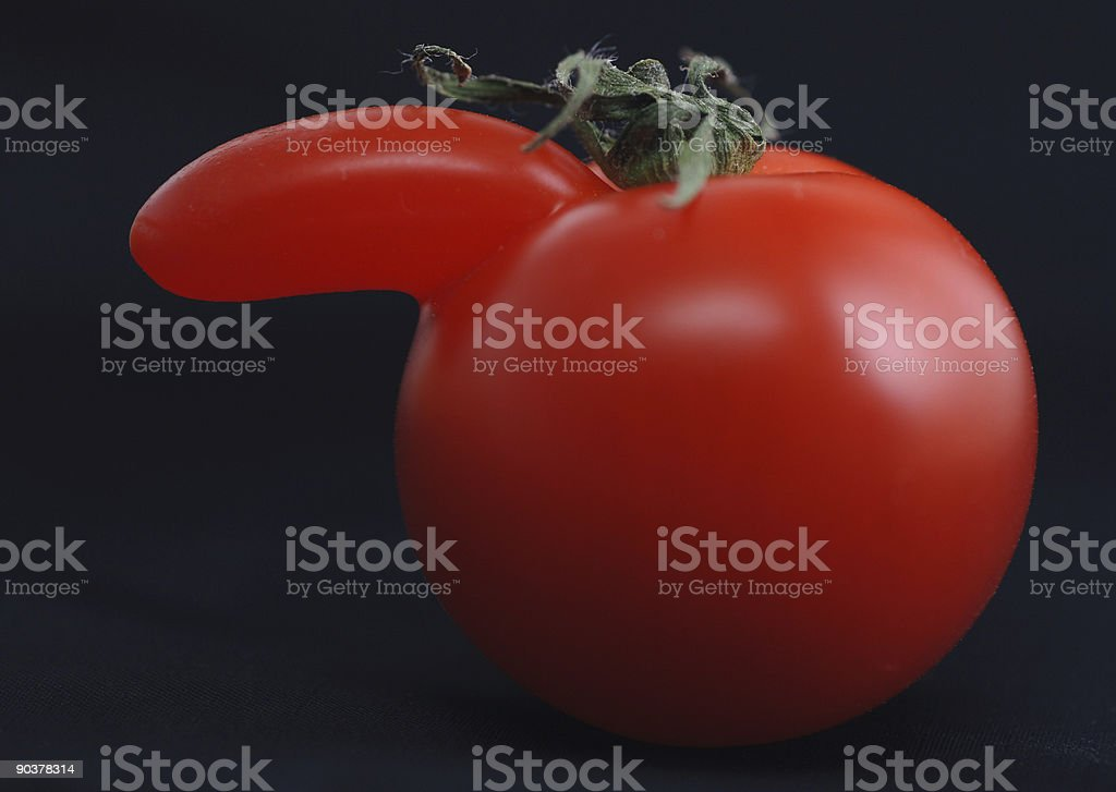 tomato with nose stock photo