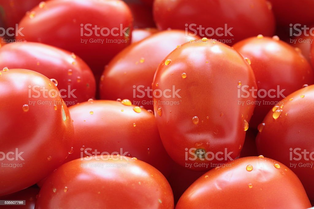 tomatoes as background stock photo