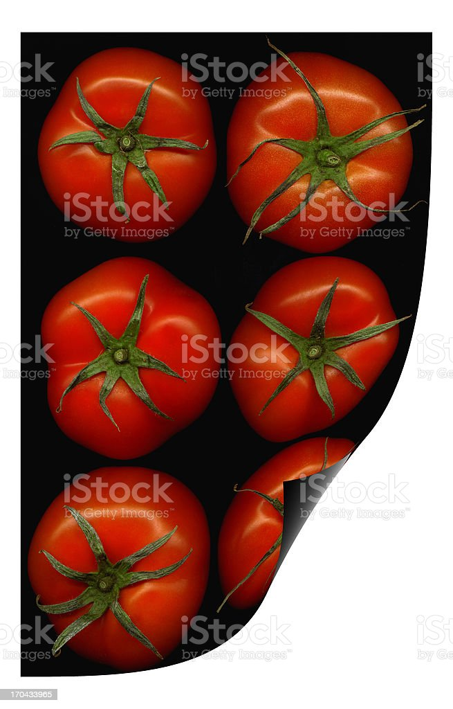 tomatoes curl distortion royalty-free stock photo