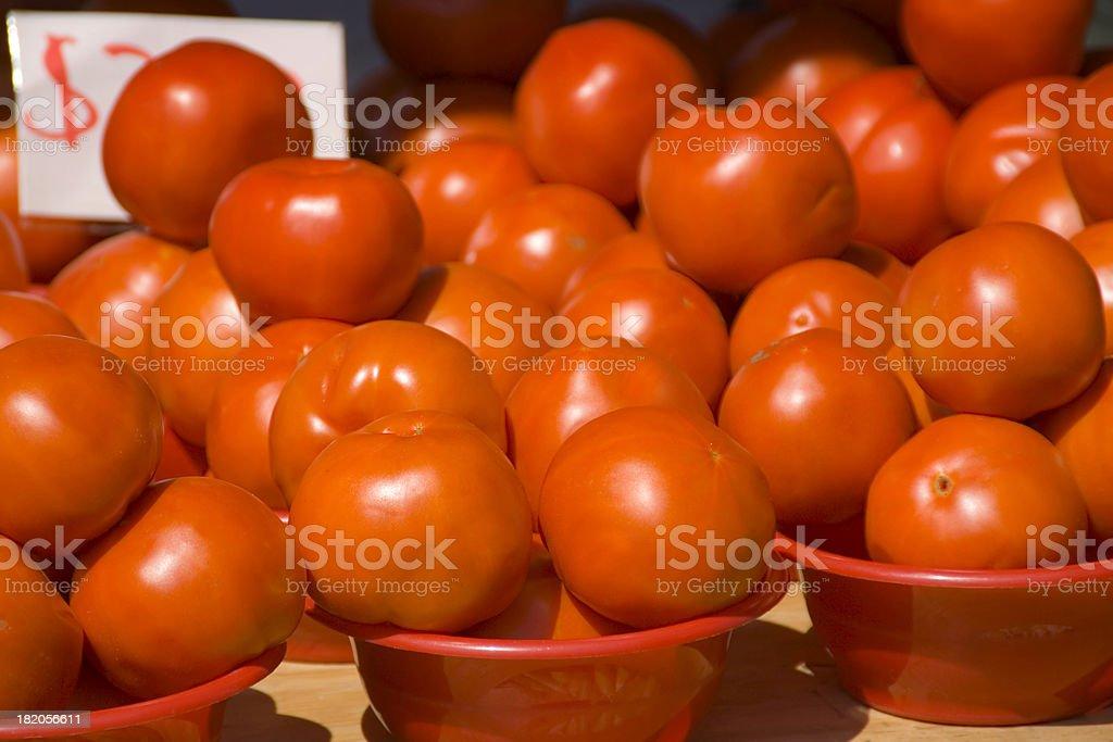 Tomatoes Harvest stock photo