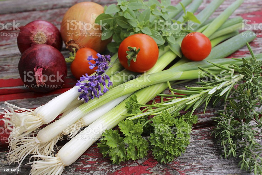 tomatoes, herbs and onions stock photo