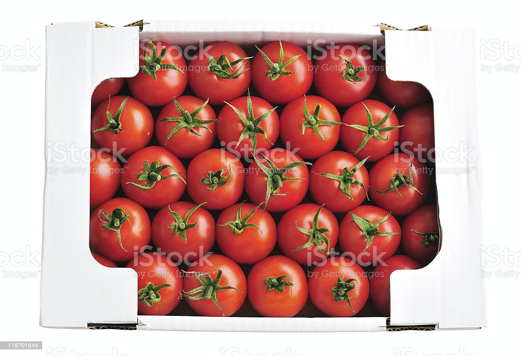 Tomatoes in Box stock photo