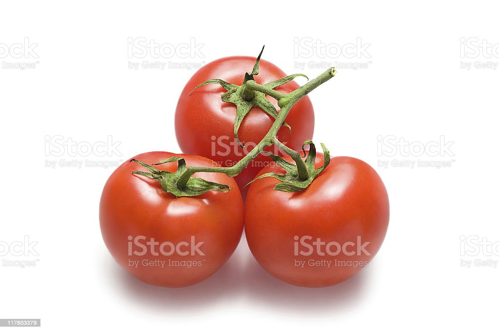 Tomatoes on a bunch royalty-free stock photo