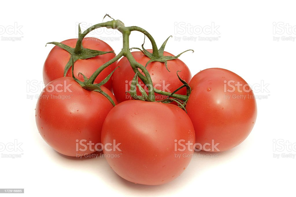 Tomatoes on the vine, isolated with clipping path stock photo