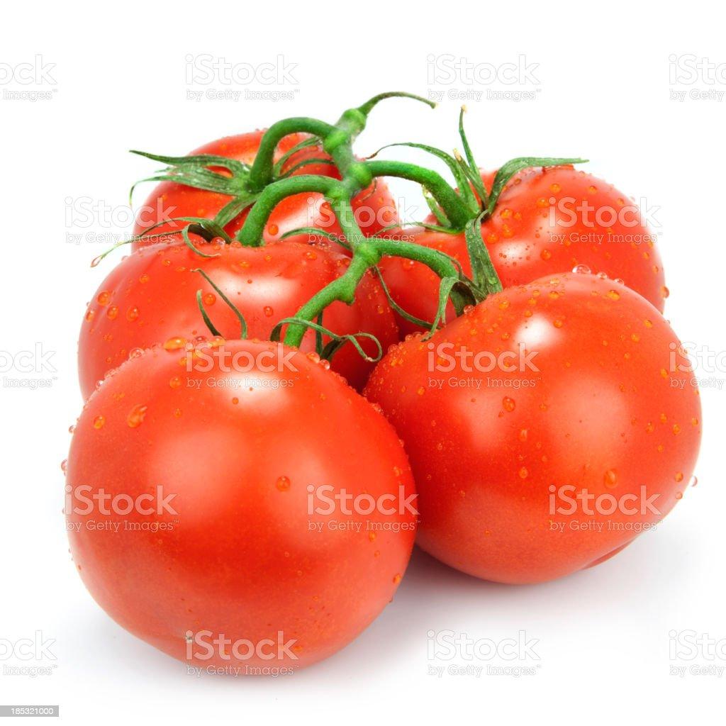 Tomatoes on the vine stock photo