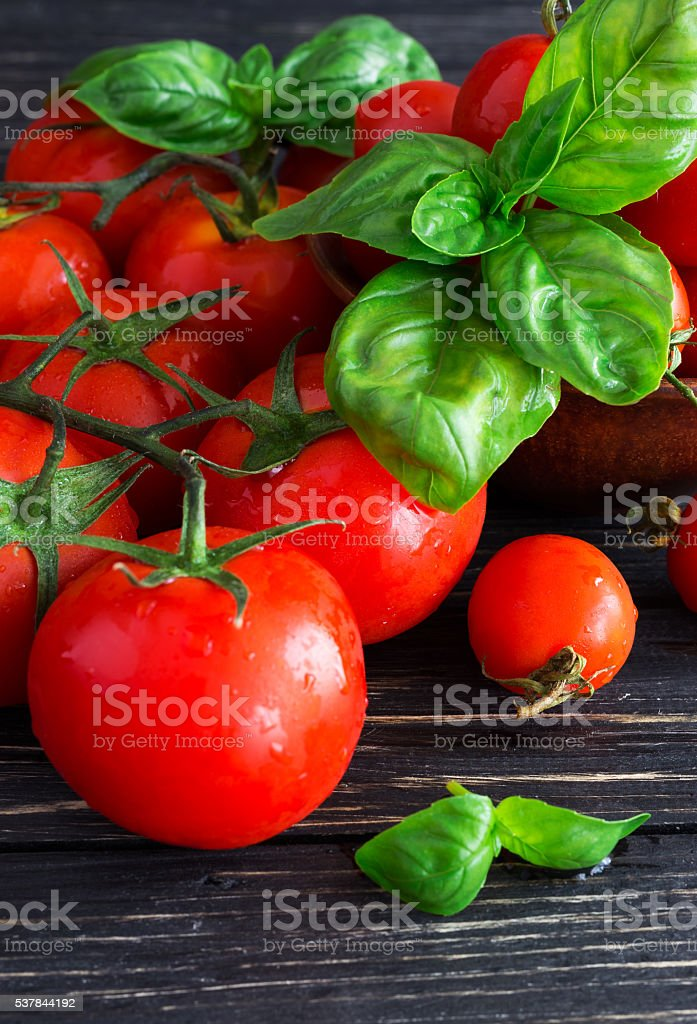 Tomatoes on vine and green basil stock photo