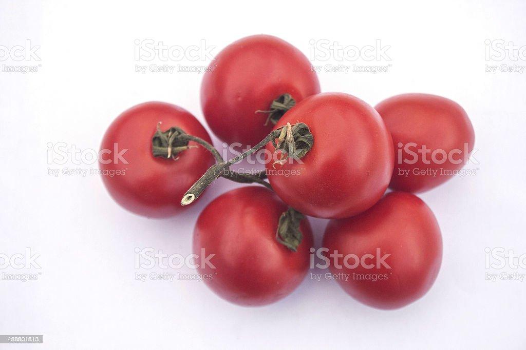 Tomatoes on white background royalty-free stock photo