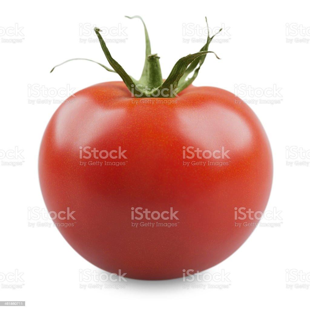 Tomatoes stock photo