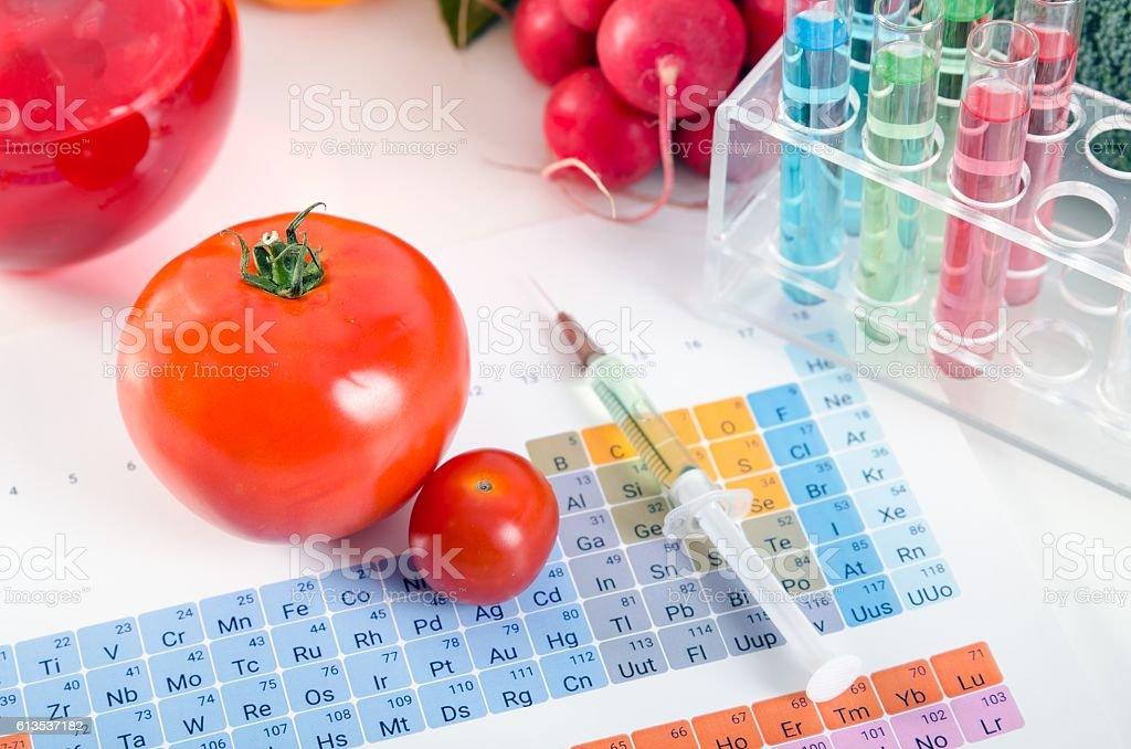 GMO tomatoes, syringe, test tubes in laboratory on periodic table. stock photo