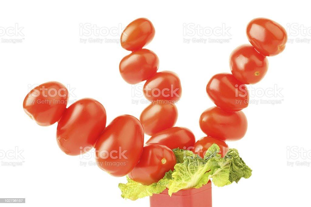 Tomatoes tree royalty-free stock photo