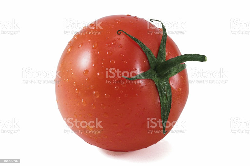 tomatoes wet single royalty-free stock photo