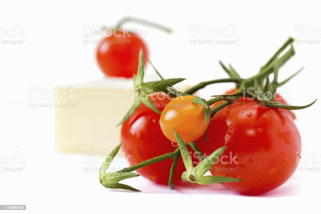 tomatoes with French brie cheese royalty-free stock photo
