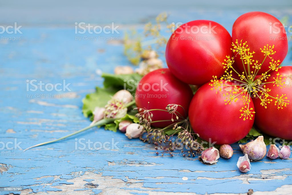Tomatoes with garlic and dill. stock photo