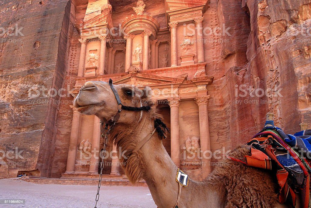 Tomb and camel in Petra, Jordan stock photo