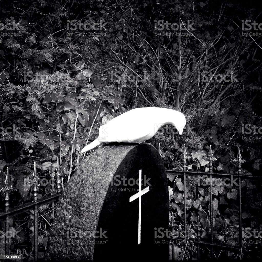 Tombstone with cross and dove royalty-free stock photo