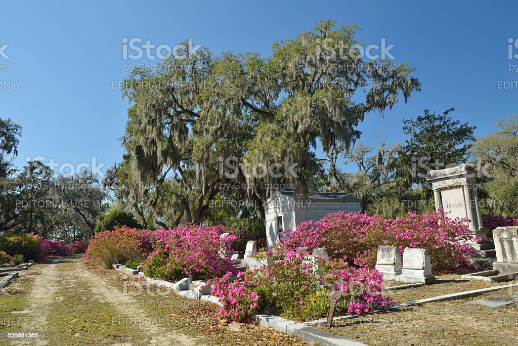 Tombstones at Bonaventure Cemetery in Savannah stock photo