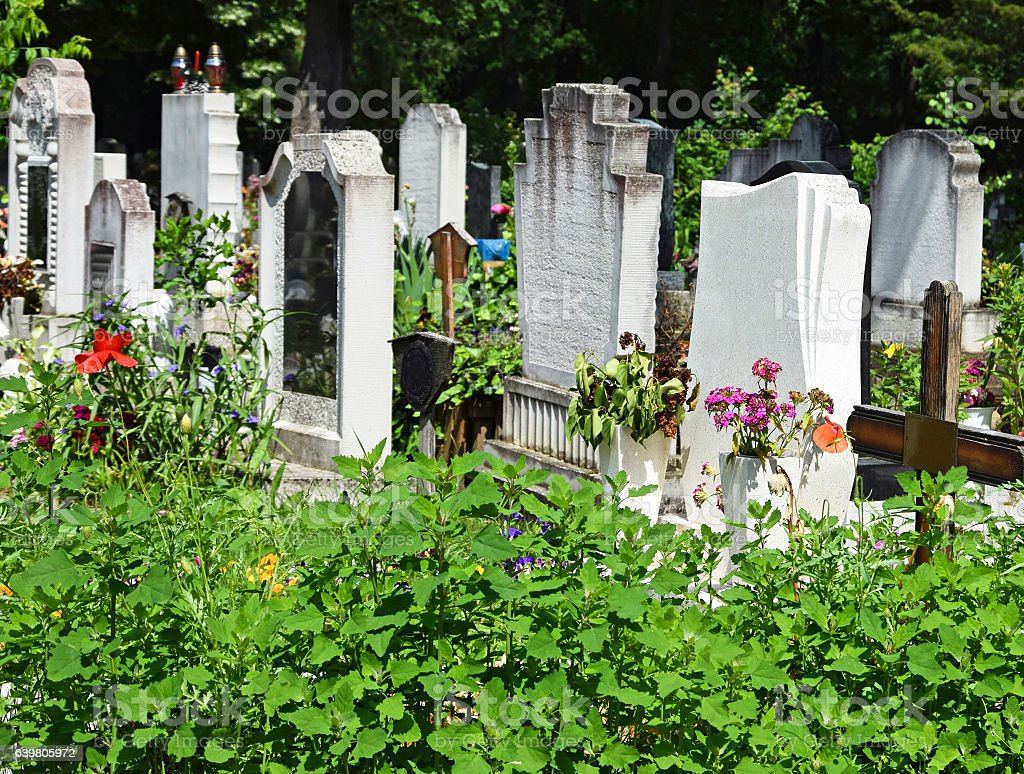 Tombstones in the public cemetery stock photo