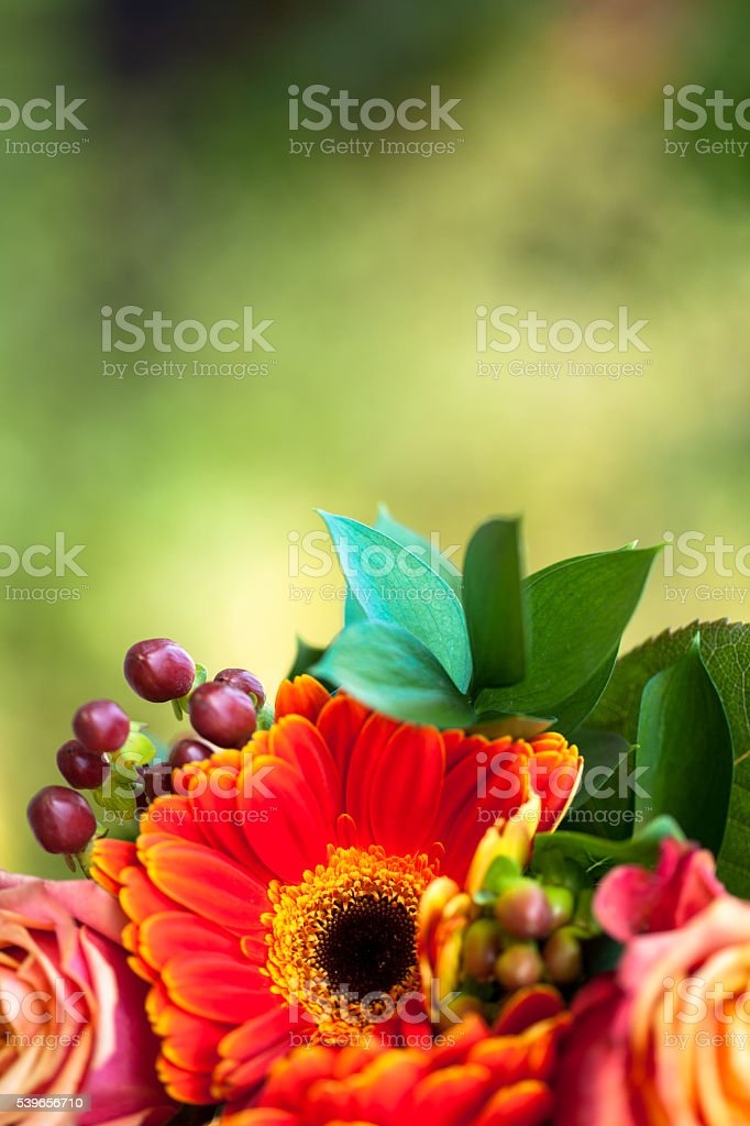 Toned fresh flowers on blurred background stock photo