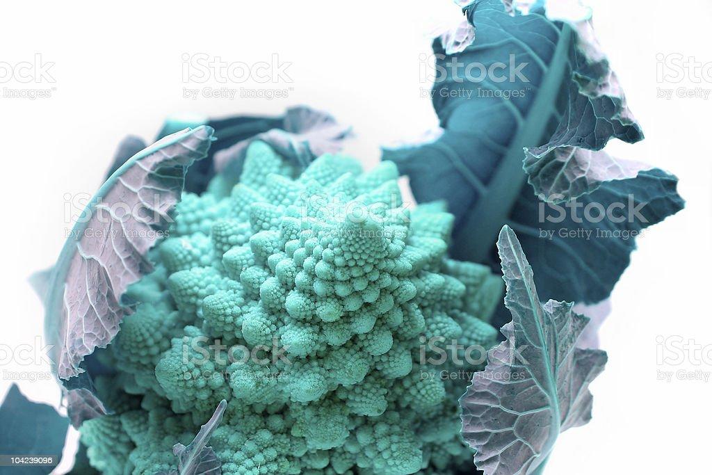 Toned Romanesco Broccoli stock photo