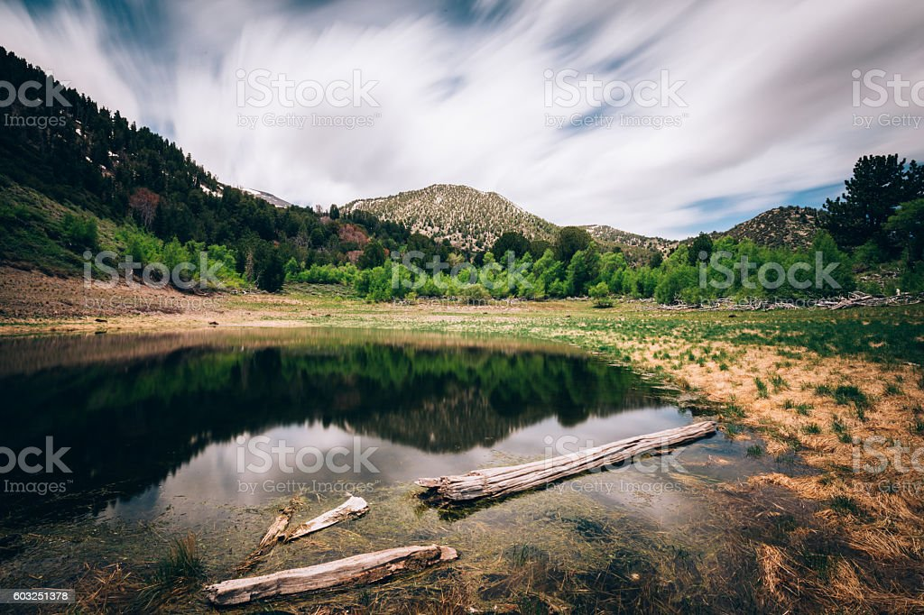 Toned shallow Church's Pond in Galena Forest stock photo