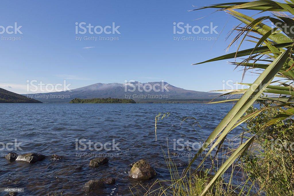 Tongariro Volcano View From Lake Rotoaira stock photo