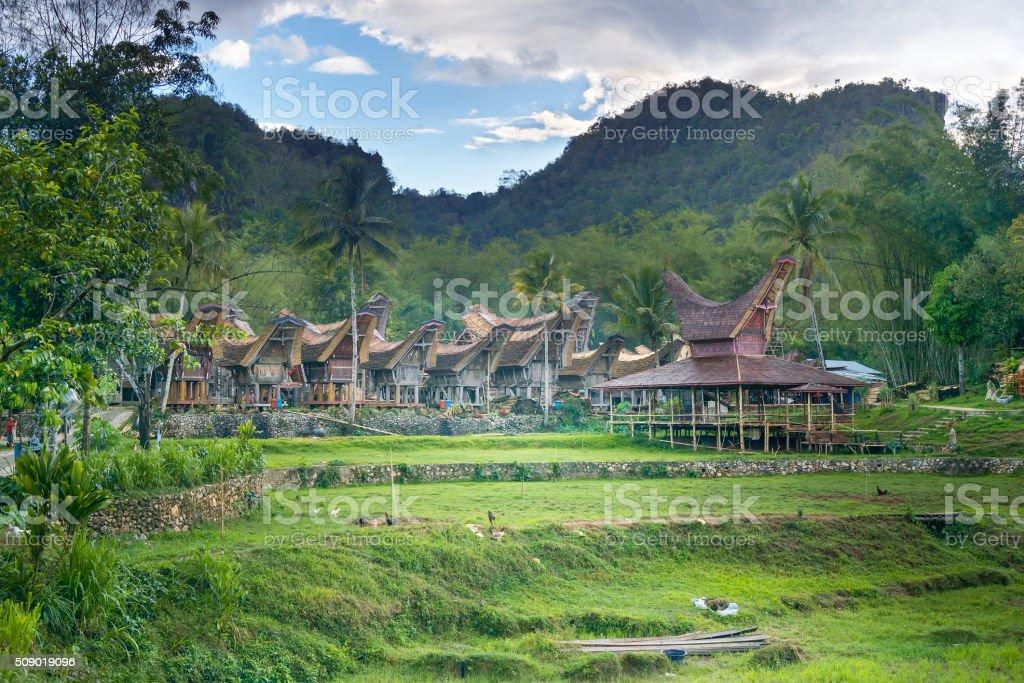 Tongkonan traditional village Kete Kesu stock photo