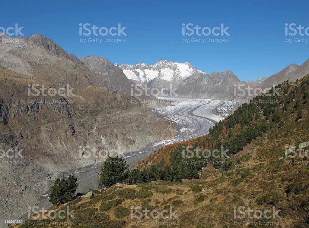 Tongue Of The Aletsch Glacier stock photo