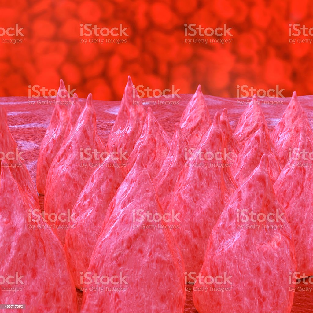 Tongue surface - 3d rendered illustration stock photo