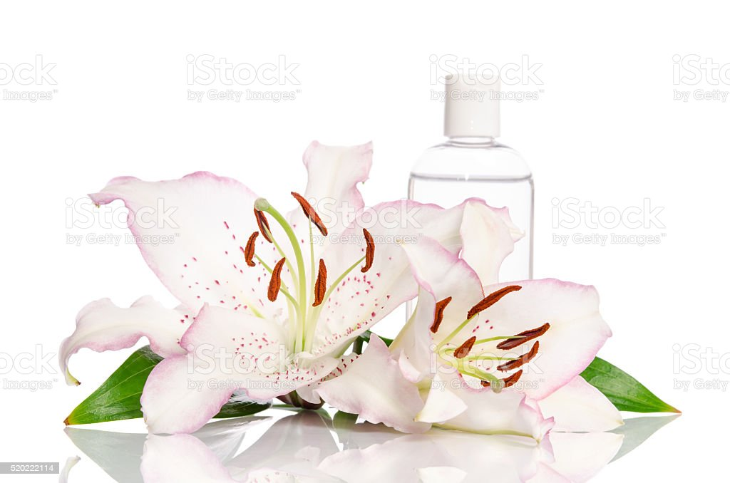 tonic for skin care with lily flower stock photo