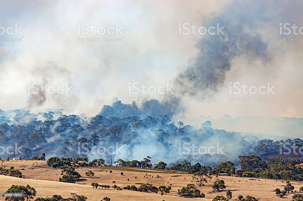 Too close for comfort: bushfire burning close to houses stock photo