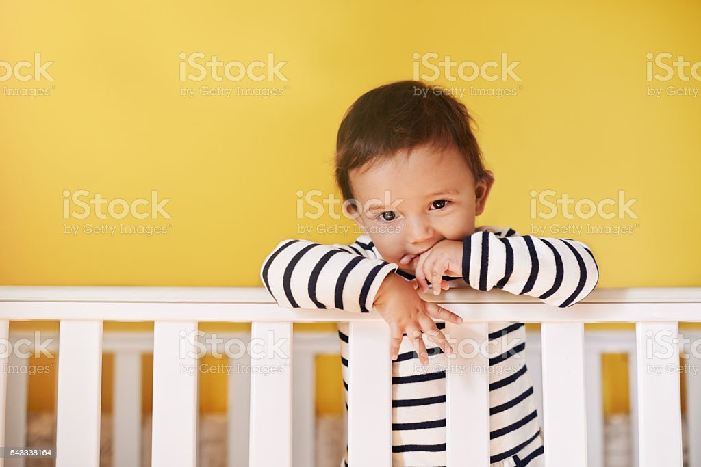 Too cute for words stock photo