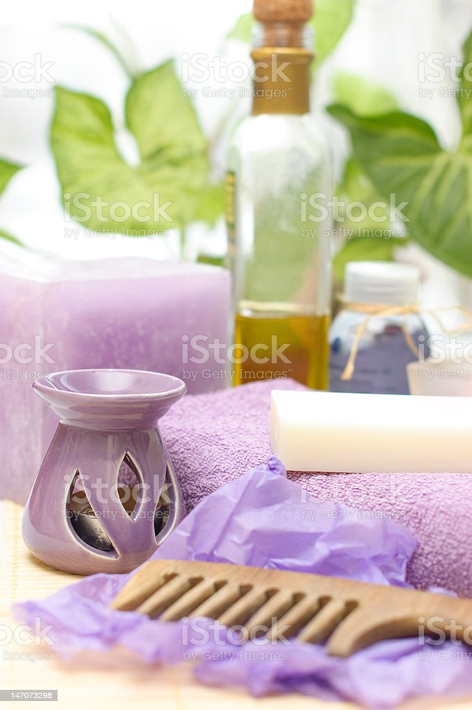 tools for body care in the spa salon royalty-free stock photo